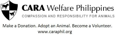 www.caraphil.org