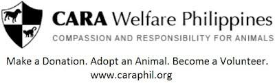 www.caraphil.org
